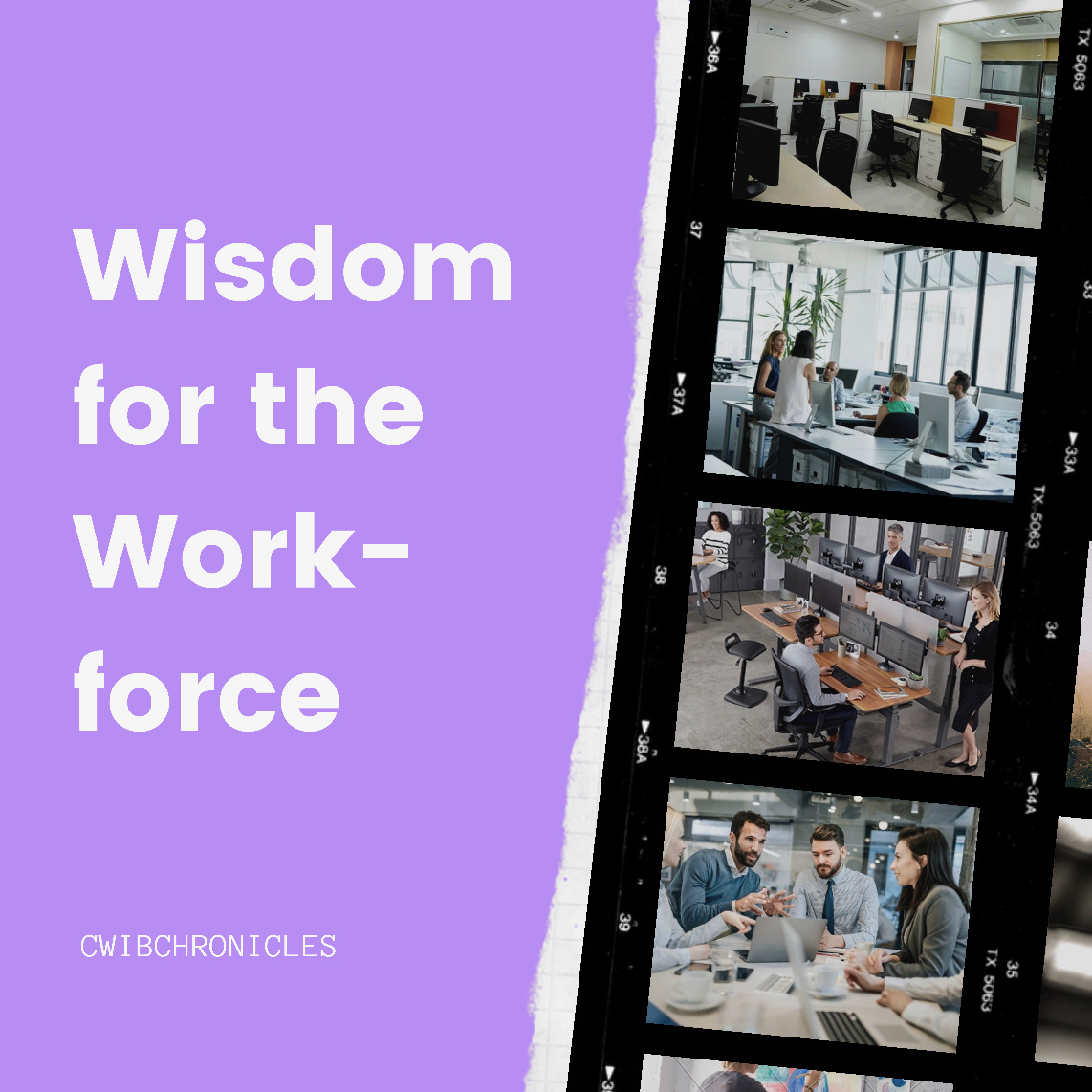Wisdom for the Workforce